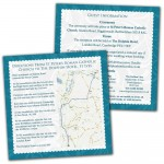 Wedding Invitation Guest Information Cards